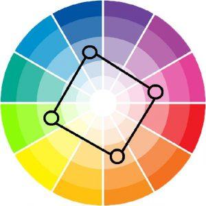 skema warna kotak pada roda warna
