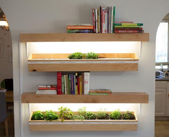 dekorasi ruang dengan tanaman, pencahayaan alternatif untuk tanaman indoor