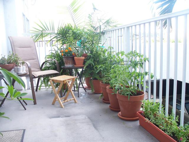 desain balokn dengan tanaman; pot plant