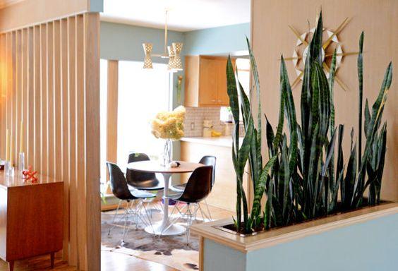 dekorasi ruang dengan tanaman, unsur dan elemen natural