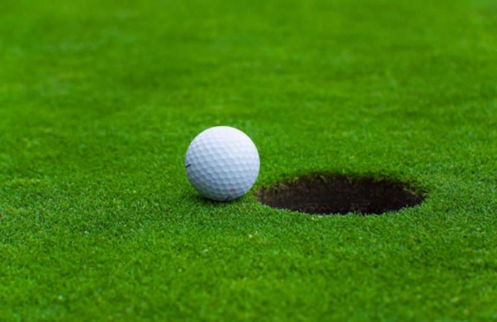 rumput golf untuk taman rumah